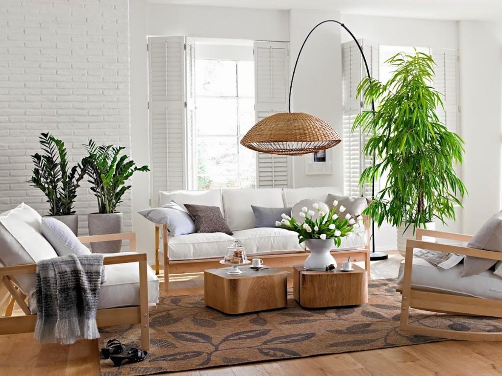 decoracion-plantas-feng-shui